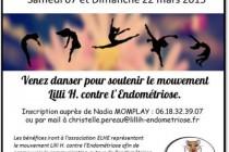 Rosny-sur-Seine : un stage de danse pour soutenir le mouvement Lilli H. contre l'endométriose