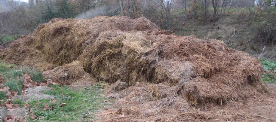 Mantes-la-Jolie : comme l'an dernier, le fumier de cheval provoque une odeur répugnante