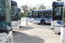 Transports : les bus à l'arrêt sur le réseau TAM en Yvelines