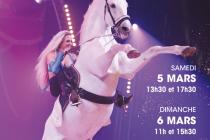 Les Mureaux: 15ème édition du Festival International du Cirque ce weekend