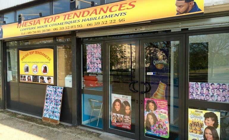 Thesia top tendances salon de coiffure afro et produits for Salon de l orientation mantes la jolie