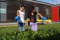 Mantes-la-Jolie : portes ouvertes dans les 4 Centres de Vie Sociale le 14 septembre