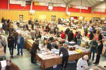 Rosny-sur-Seine : salon toutes collections dimanche