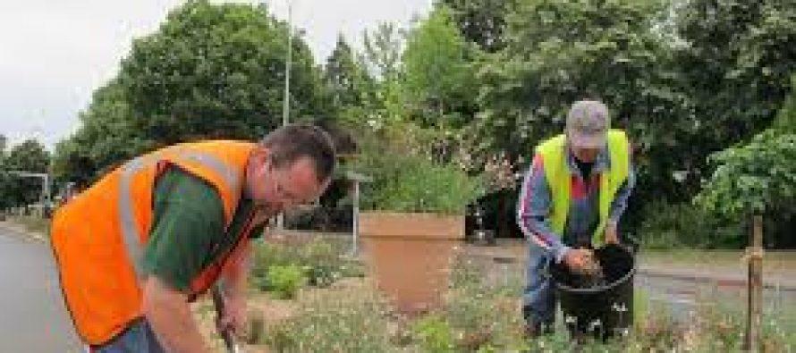 La ville de Limay labélisée «terre saine» par le ministère du développement durable