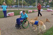 Mantes & Compagnie : le rendez-vous des animaux le 1er octobre au parc des expositions