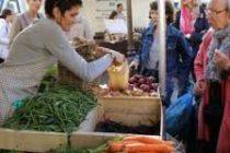 Mantes-la-Jolie – Parlons Terroir : 30 producteurs locaux pour la 7ème édition