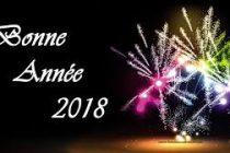 La rédaction de Mantes Actu vous souhaite une bonne année 2018