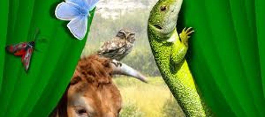 Limay : assistez à la fête de la nature