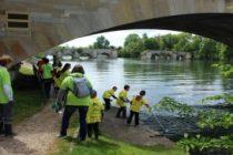 Limay : nettoyage des berges samedi 2 juin