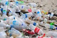 Michel Vialay (LR) lance une pétition pour supprimer les bouteilles en plastique