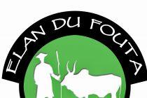Mantes-la-Jolie – Solidarité : Élan du Fouta lance un appel aux dons