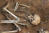 Château de Rosny-sur-Seine : un crâne humain et des ossements découverts