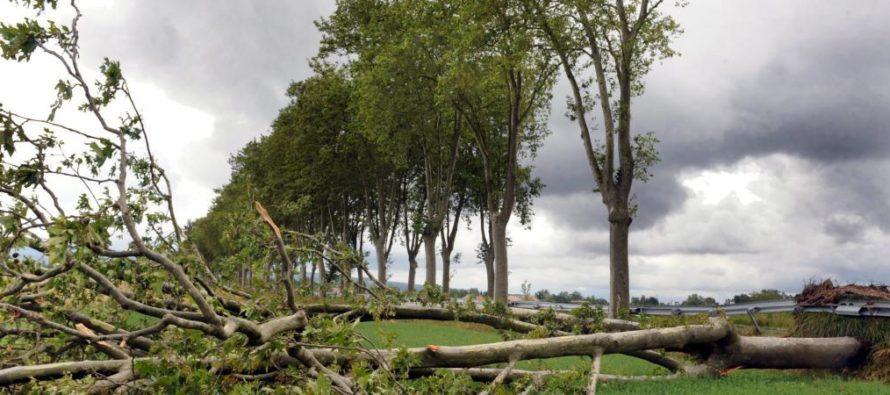 Alerte Météo : de forts vents dans les Yvelines ce weekend