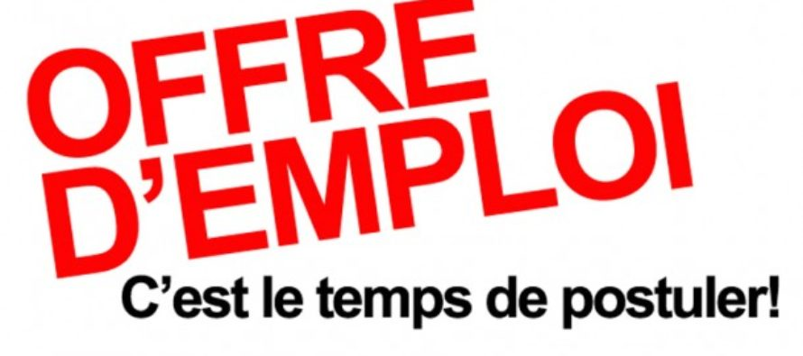 Mission Locale Mantes : découvrez les 74 offres d'emploi de la semaine 20