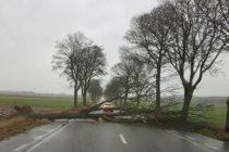 Tempête Freya : le département des Yvelines placé en vigilance orange