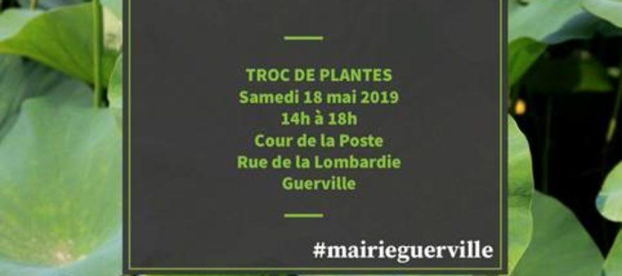 Guerville : le troc des plantes, c'est samedi 18 mai