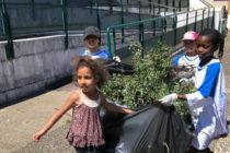 Mantes-la-Ville : opération de nettoyage réussie au quartier du Village