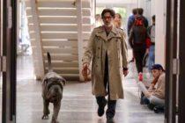 CGR Mantes – Sorties du 30/10 : Mon chien stupide, Doctor Sleep et Retour  zombieland