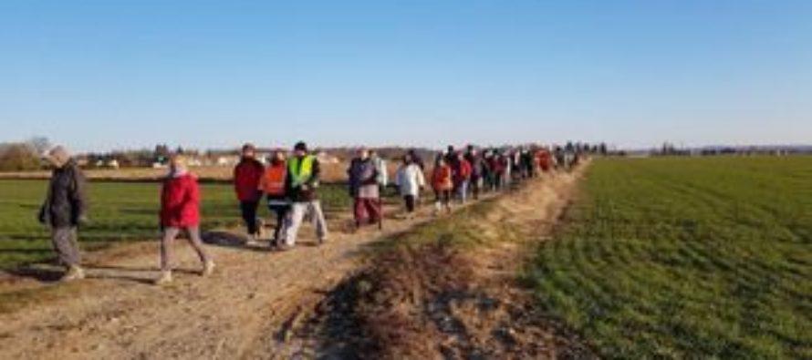 Magnanville : participez à la marche le 2 février avec trois parcours proposés