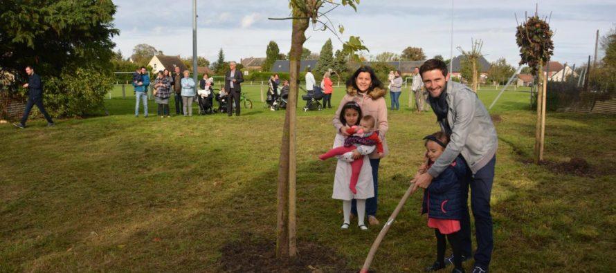 Limay : lancement de l'opération «1 arbre, 1 enfant» le 26 novembre