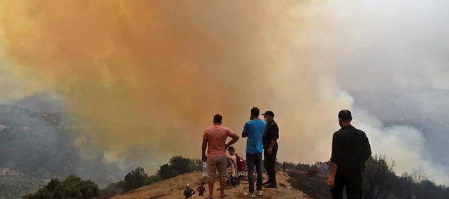 Incendies en Algérie : une collecte de médicaments à Mantes-la-Jolie